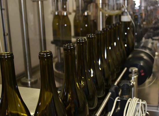 Sanctuary Vineyards bottling