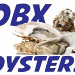 obx oysters